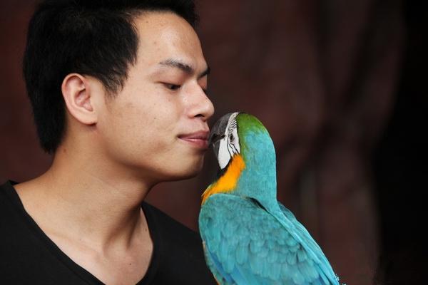 国际接吻日实拍广东长鹿童话动物王国动物亲吻