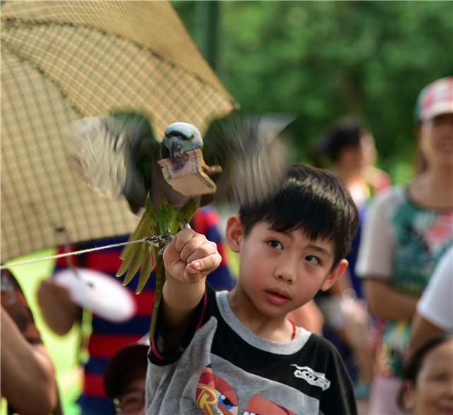 有一群长得比外星人还可爱的动物五一空降佛山罗南生态园
