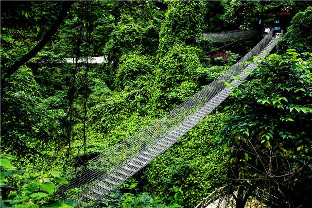 佛山市民想观赏瀑布何必去清远,三水这座山就有叠瀑景观